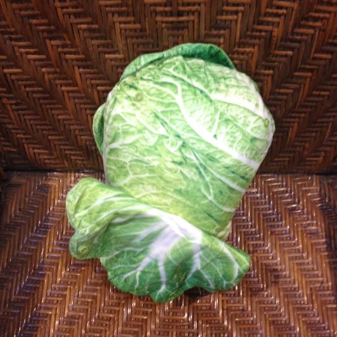 Autour des légumes 6