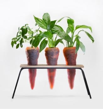 Trio de carotte - Lilas Force - 292 € / Pièce
