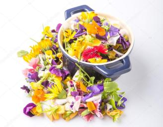 depositphotos_71279813-stock-photo-mix-edible-flower-salad