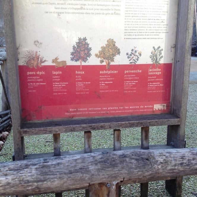jardin médieval 4