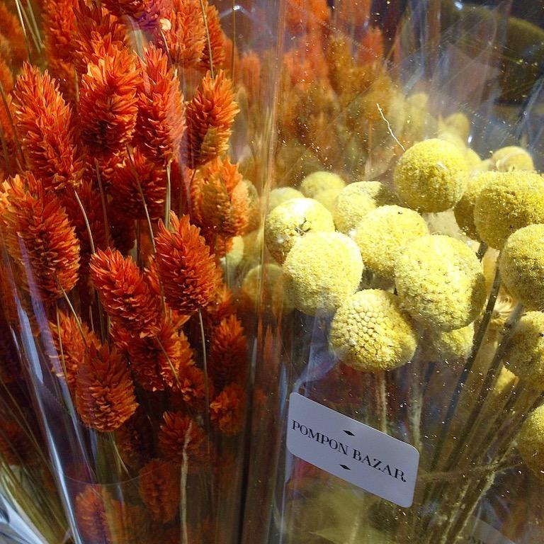 Fleurs séchées 22