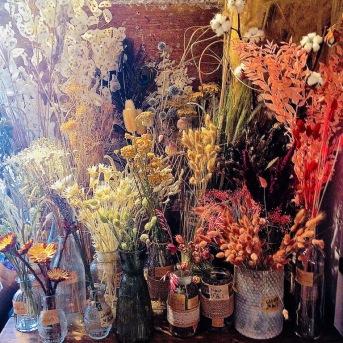 Fleurs séchées 6