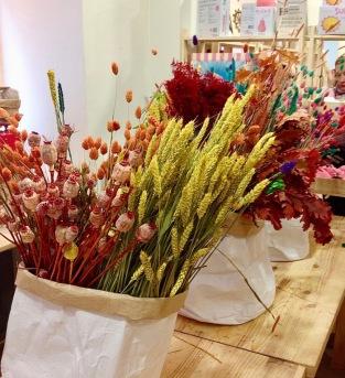 Fleurs séchées 9
