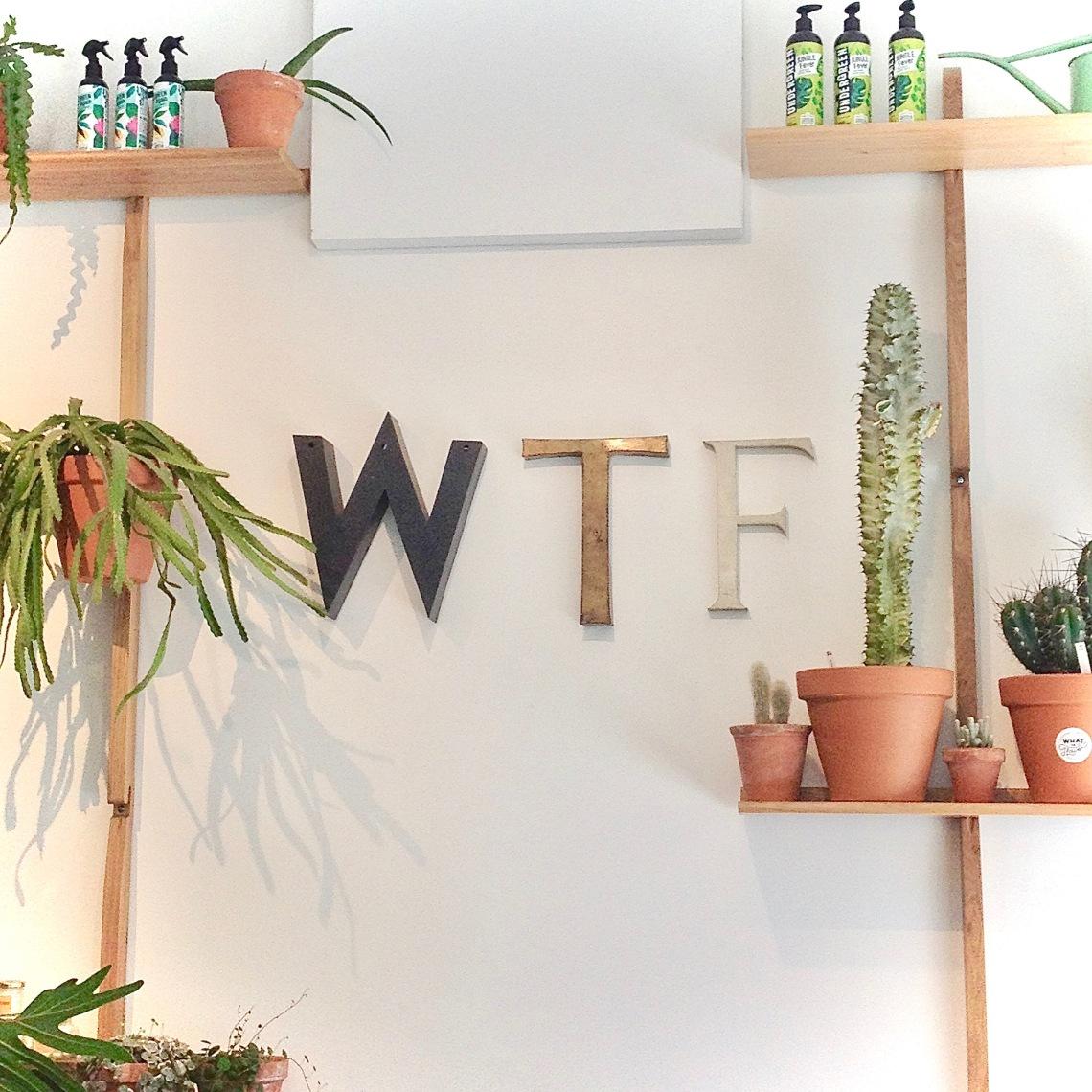 WTF 3