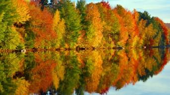 slideshow-automne-3-16_9
