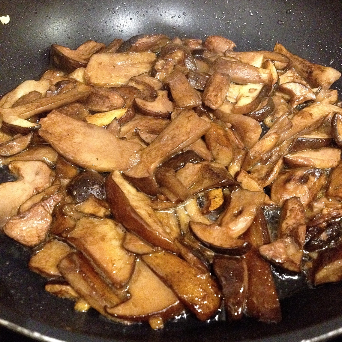 Cueillette sauvage champignon 53